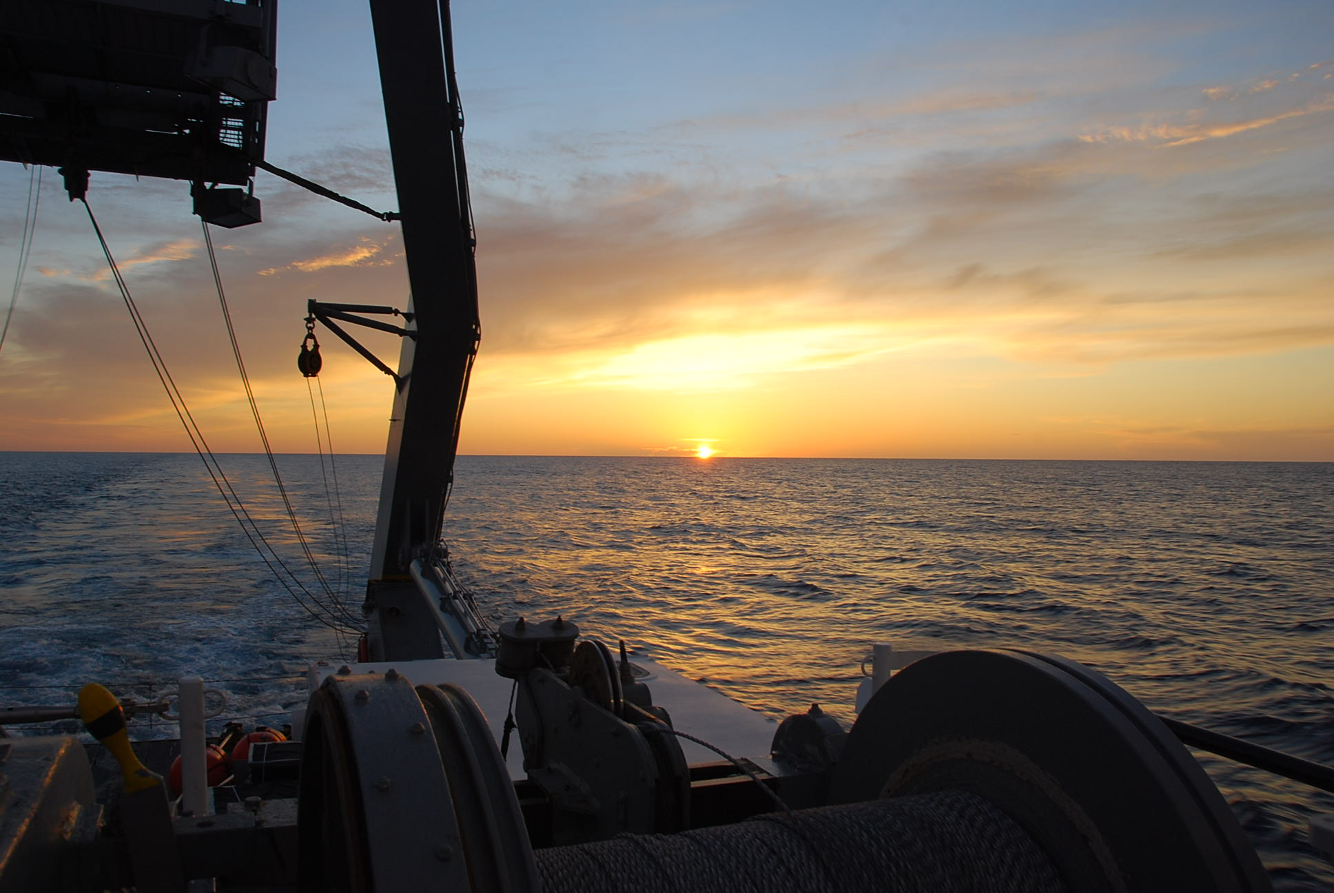 Role of the plankton community in the particle flux in the Sargasso Sea